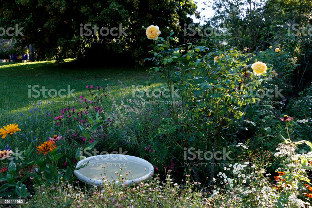 Birdbath Nestled Among Flowers in a Country Garden stock photo