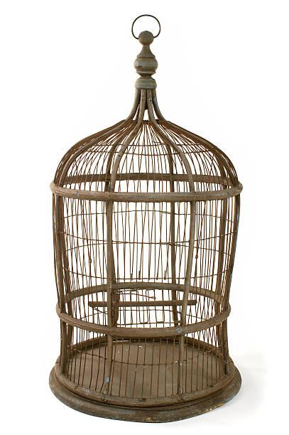 Vogelkäfig – Foto