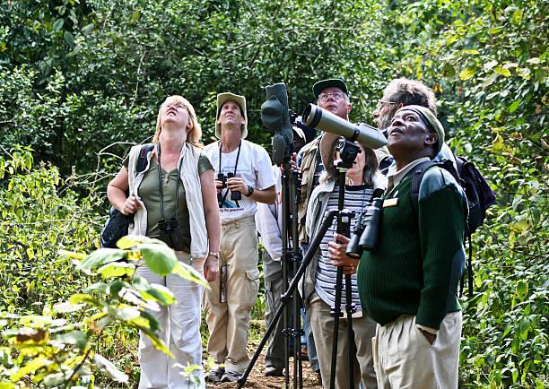Birders birdwatching on safari, Mt Kenya National Park