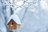 A birdhouse covered in snow with Christmas lights in the background.