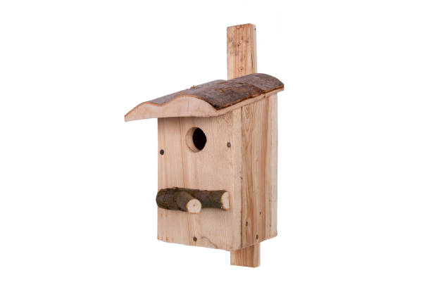 Birdhouse on a white background. Shed for birds on a white background. – zdjęcie