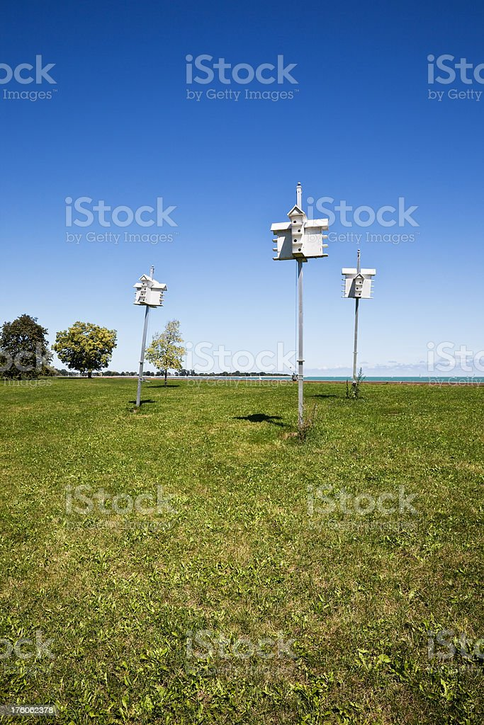 Birdhouses in Chicago Park royalty-free stock photo
