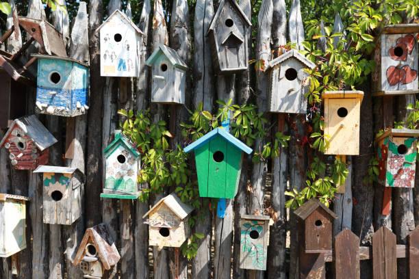 Casas de pájaros en pared de madera - foto de stock