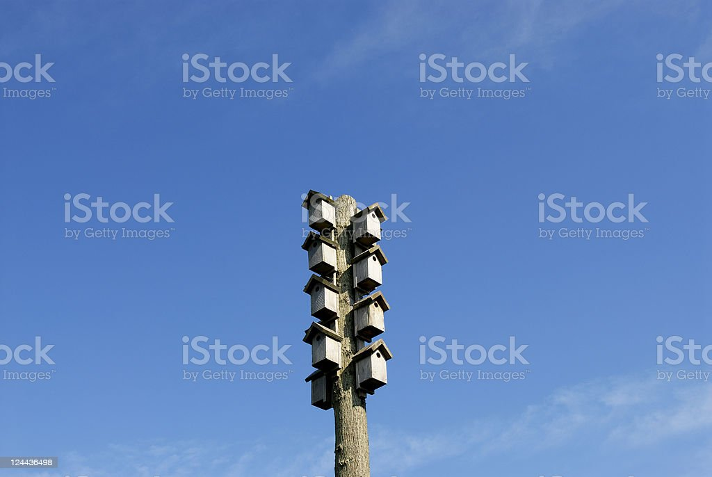 Birdhouses vacant! royalty-free stock photo