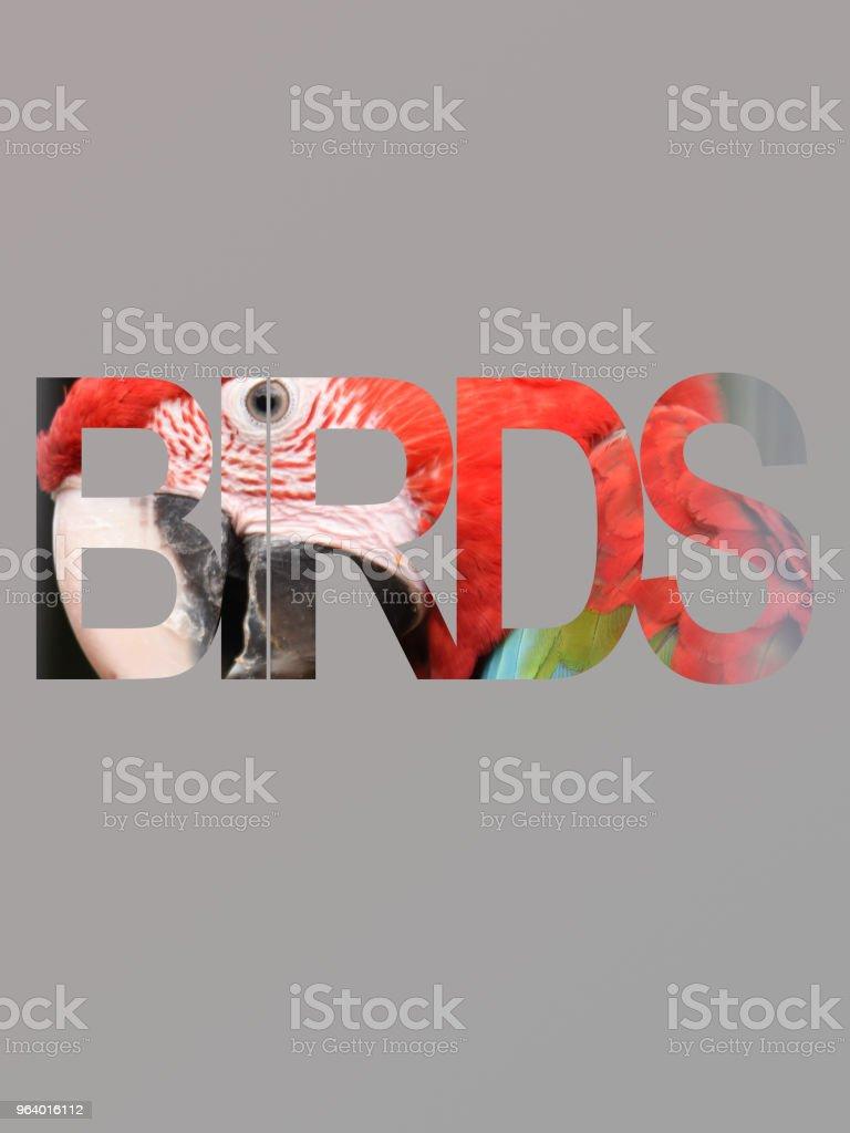 Birds advertisement sign - Royalty-free Advertisement Stock Photo