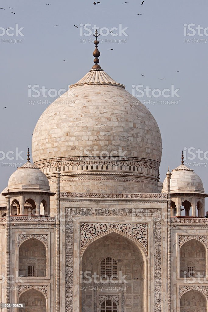 Birds circling the marble central dome of the Taj Mahal stock photo