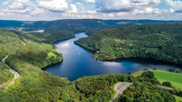 Bird's eye view of lake and forest taken by drone stock photo