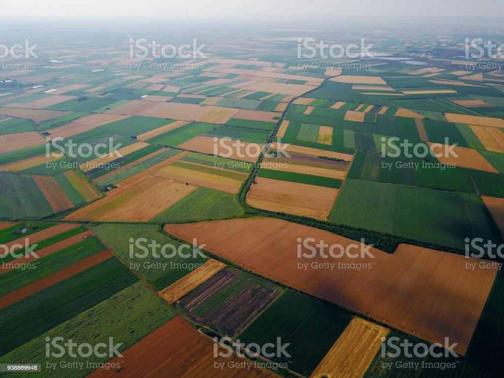 Bird's eyes aerial view photo from flying drone of fields before harvest at summer in the countryside. stock photo