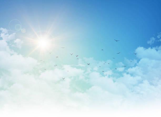 Birds flight in rising sun picture id822047112?b=1&k=6&m=822047112&s=612x612&w=0&h=4gue2 yyzfx9 ys9 pbcqwlff1a8orkwpxjyxe faim=