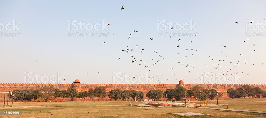 birds flying over red fort castle walls new delhi india royalty-free stock photo