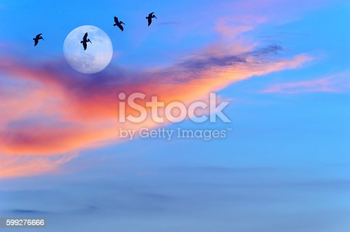 Birds flying is four silhouetted birds flying across the moon with a colorful cloud sunset against a bright blue sky.