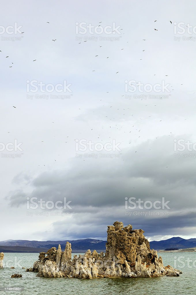 Birds in cloudy sky above tufa, Mono Lake, California, USA royalty-free stock photo
