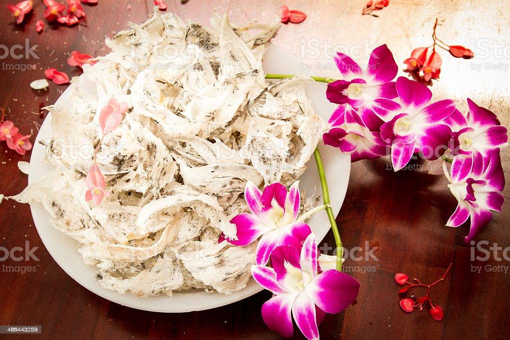 Bird's nest and Flower Background stock photo