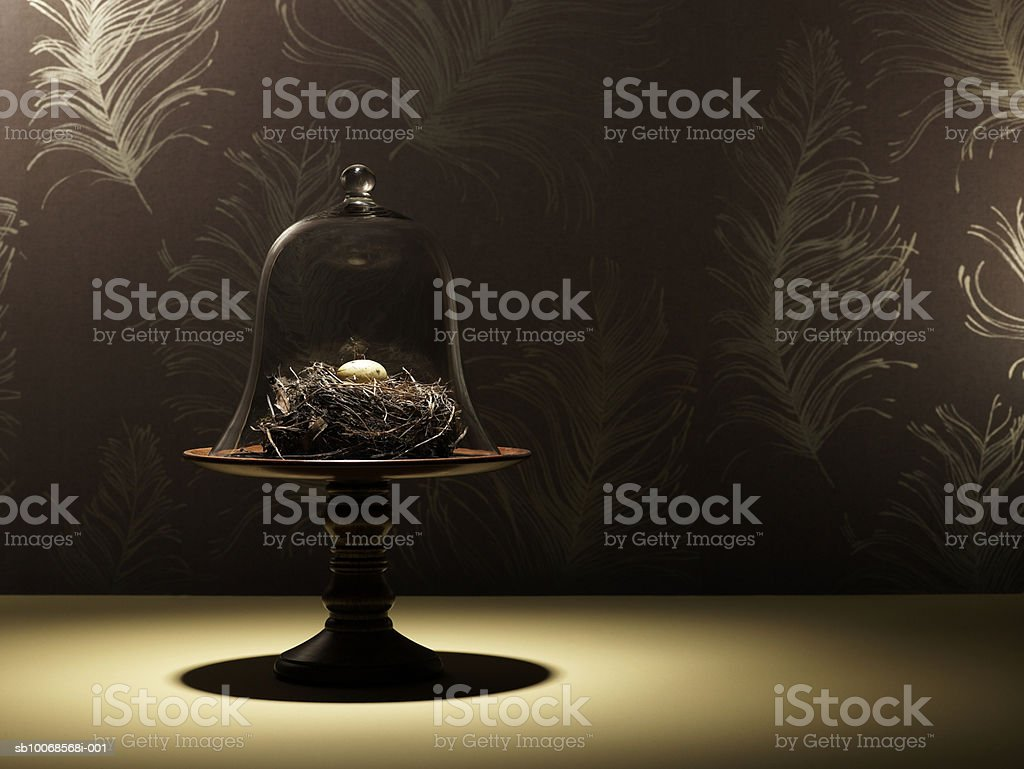 Birds nest and quail egg under glass jar| 免版稅 stock photo