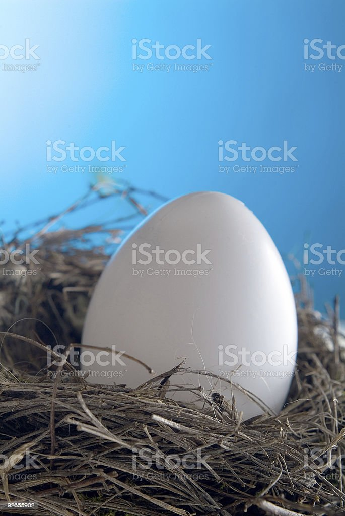 Bird's Nest Series royalty-free stock photo
