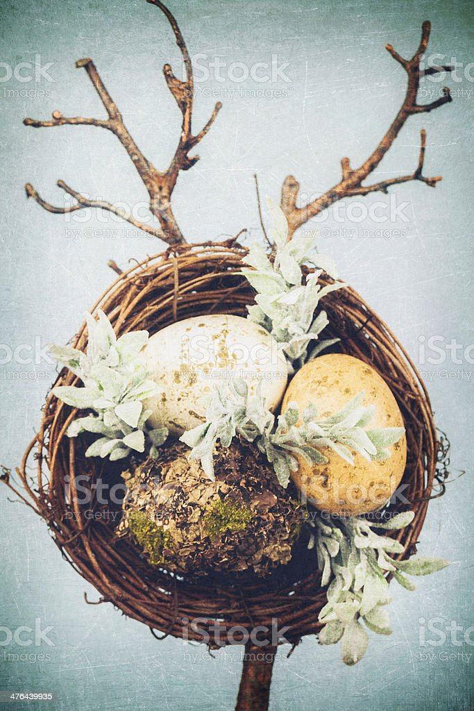 Bird's Nest with Eggs for Easter Decoration stock photo