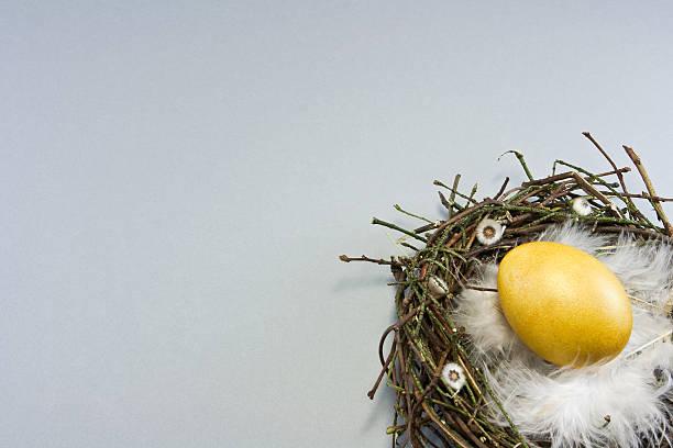 nest mit goldene Ei – Foto