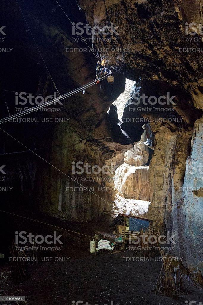 Vögel Nestern gelockt werden geerntet in der Gomantong-Höhlen – Foto
