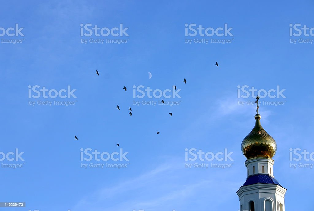 Birds on dome royalty-free stock photo