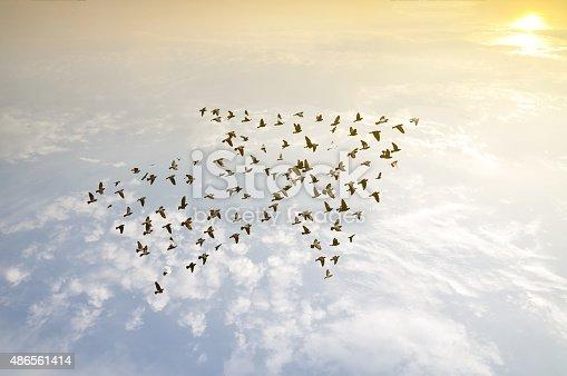 istock Birds on sky , growth development concept 486561414