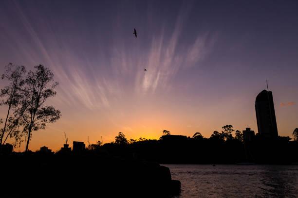 Birds on sunset sky over river and city picture id1061073740?b=1&k=6&m=1061073740&s=612x612&w=0&h=7ejctwnym5ykb5kaadywtoremfo0uwexectadziorye=