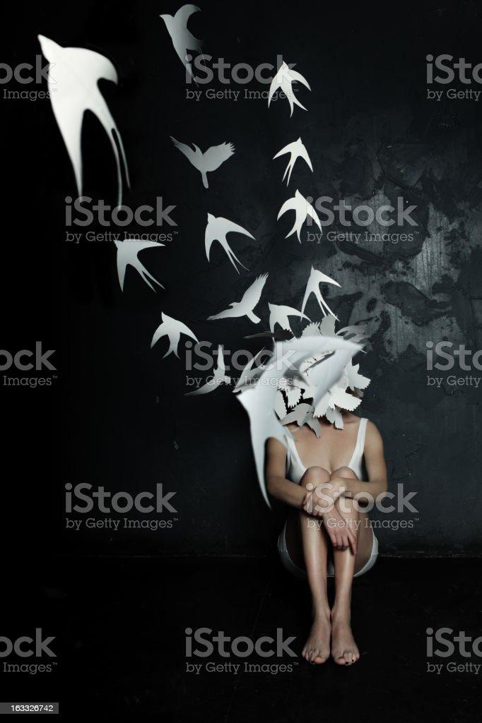 Ptaki – zdjęcie
