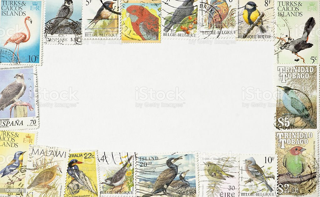 Birds Postage Stamps Frame royalty-free stock photo