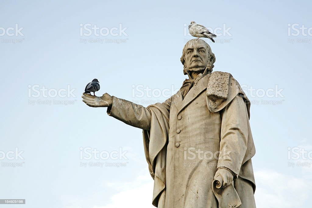 Birds resting on statue stock photo