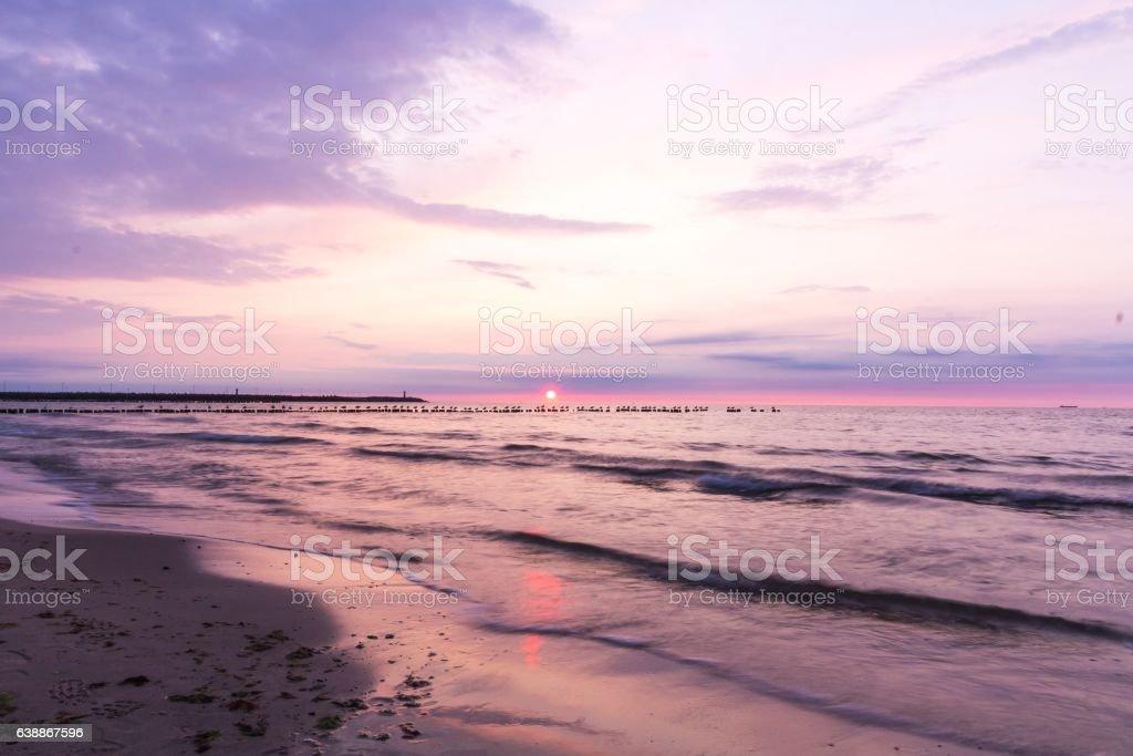 Birds sitting on the breakwater, Baltic Sea – zdjęcie