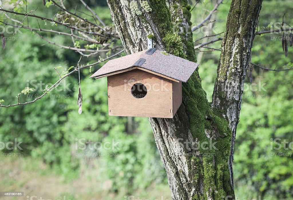 Birds Small House Stock Photo Download Image Now Istock