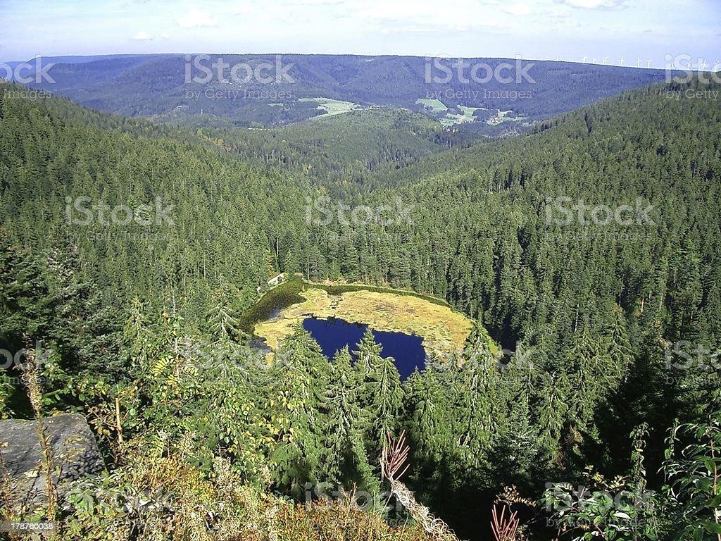 bird's-eye  view of alpin lake schreeksee in bavaria stock photo