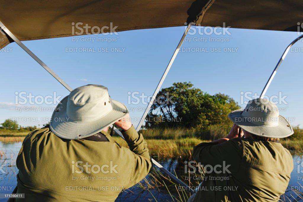 Birdwatching royalty-free stock photo