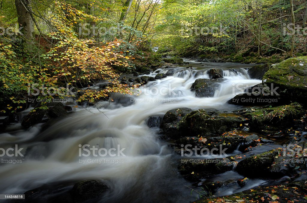 Birks of Aberfeldy stock photo