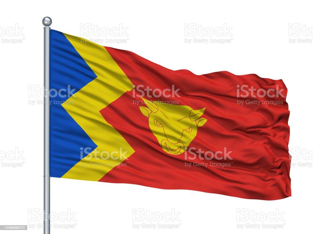Birmingham City Flag On Flagpole, Uk, Isolated On White Background stock photo