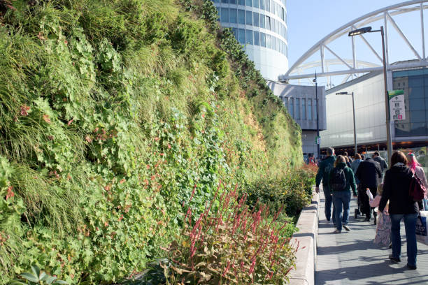 Birmingham Living Plant Wall City Centre. – Foto