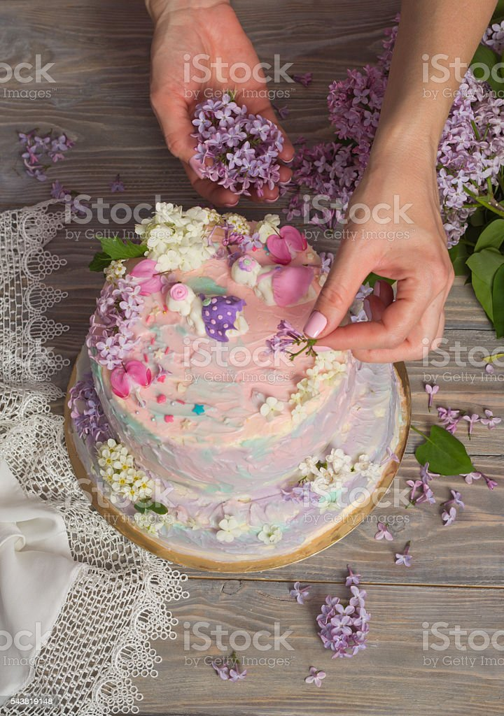 Birthday Cake For Little Girls Stock Photo More Pictures Of 12 17