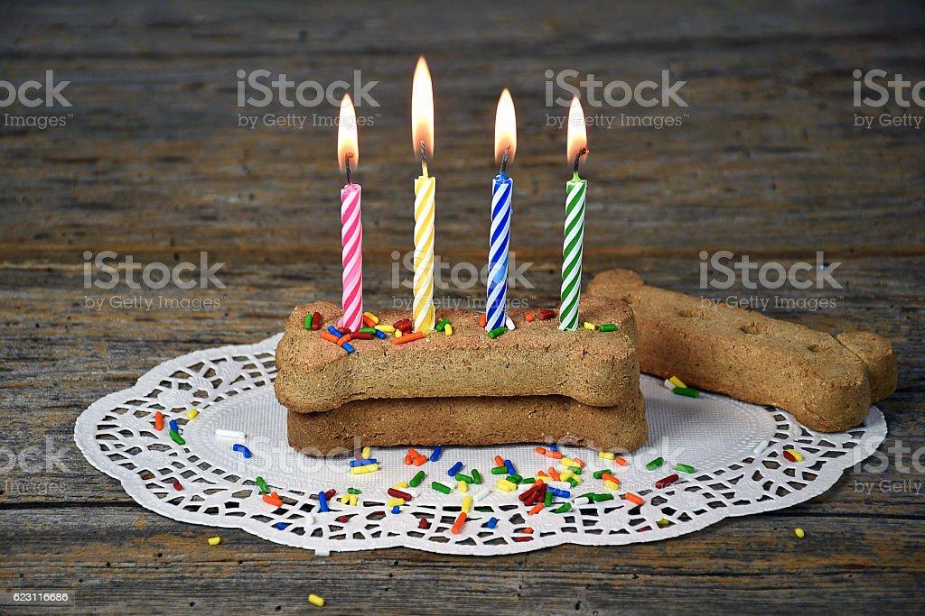birthday candles in dog bone stock photo