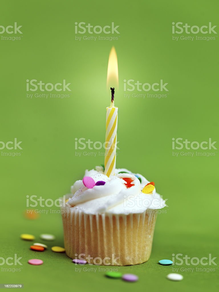 Birthday Cupcake with Candle royalty-free stock photo