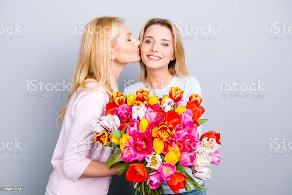 Birthday girl enjoying kiss in cheek congrats from her lovely charming mother holding big colorful bouquet of tulips comfort idyllic pleasure happiness concept isolated on grey background royalty-free stock photo