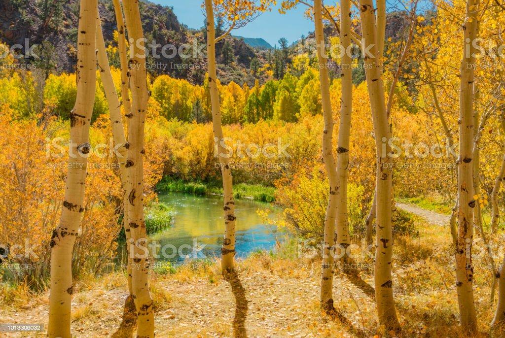 Bishop Creek canyon's Autumn, Sierra Nevada Range, CA. (P) stock photo
