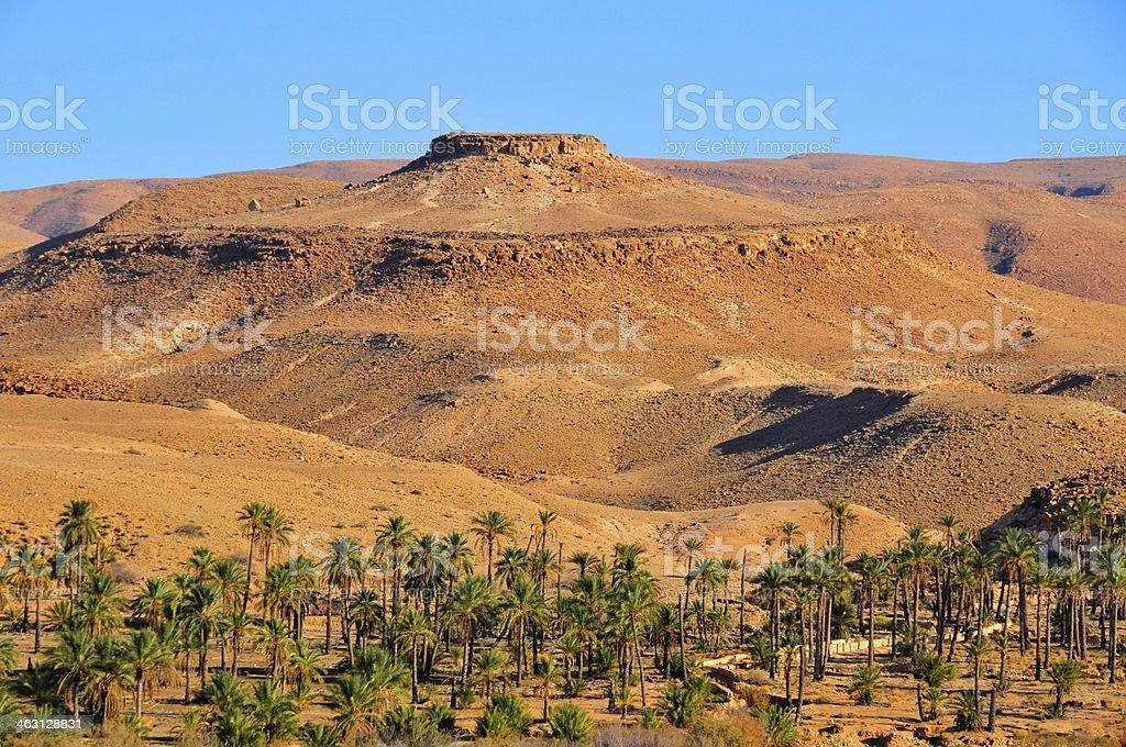 De Biskra, Algérie: oasis et mesa - Photo