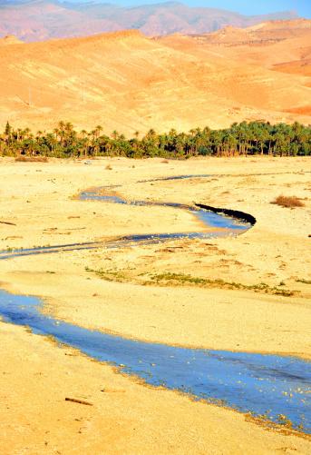 Wave of dunes in the Sahara Desert
