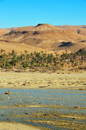Golden sand in the Sahara desert