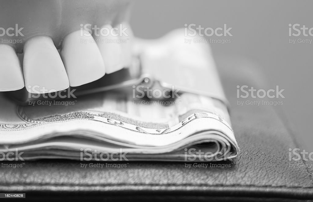 Bite out of Wallet royalty-free stock photo