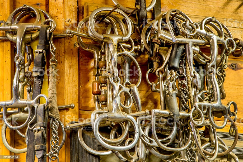 Bits On The Wall Of The Tack Room Stock Photo - Download