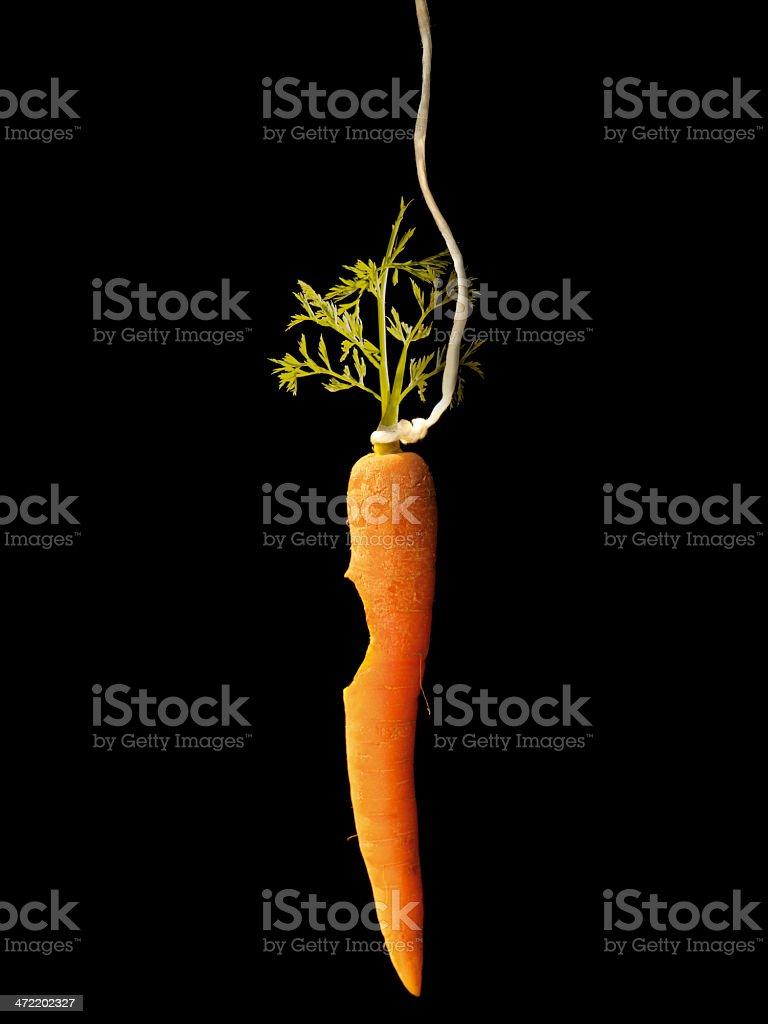 Bitten carrot stock photo