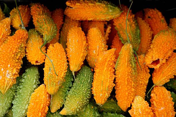 bitter gourd stock photo