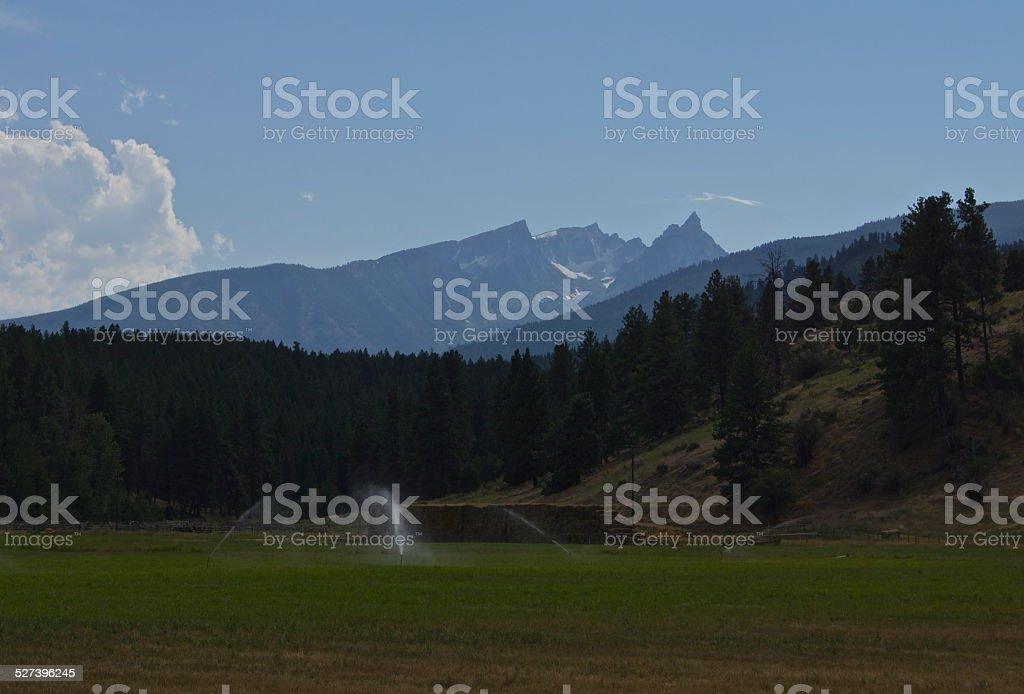 Bitterroot's Trapper Peak stock photo
