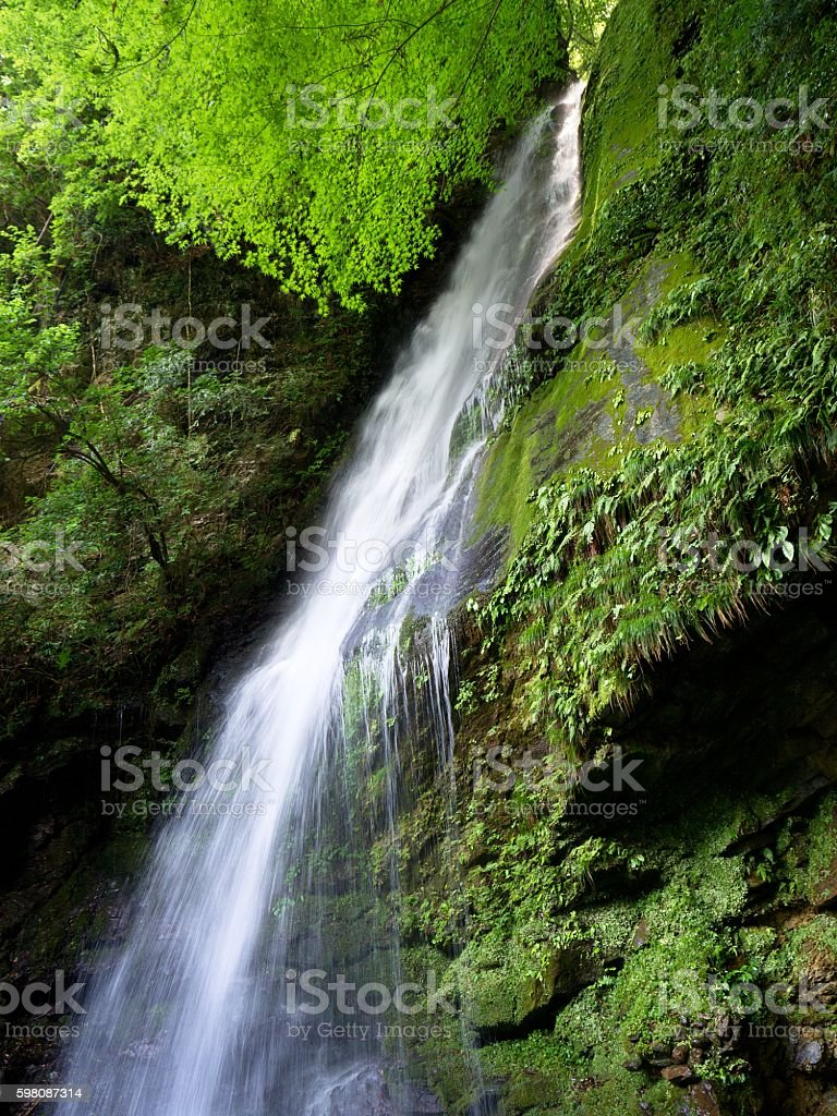 Biwa no Taki (Biwa Waterfall) stock photo