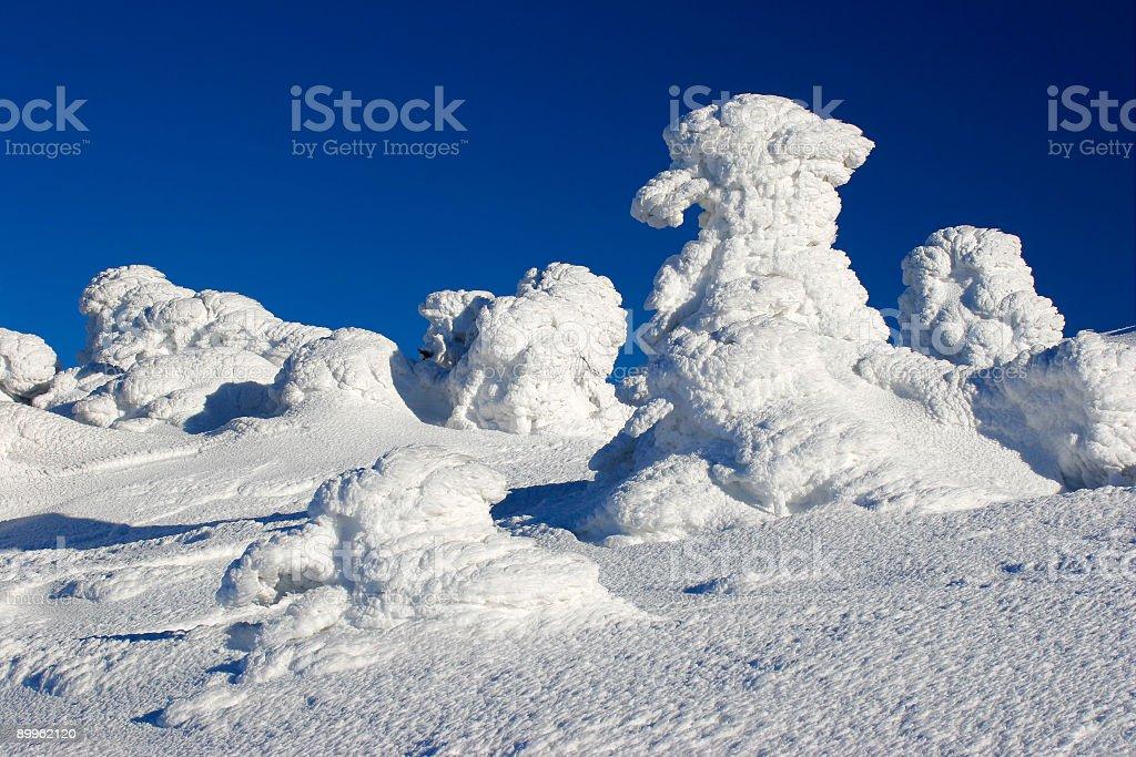 Bizarre Winter Landscape III royalty-free stock photo